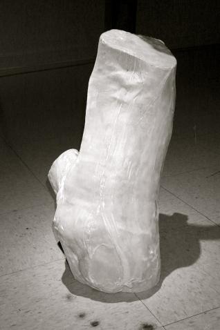 """""""Landscape For an Institution of Higher Learning"""", gallery installation - detail, velvet skinned log.  2001.jpg"""