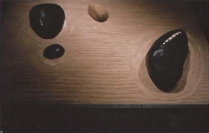 """""""S & M Zen Garden"""" gallery installation -detail.jpg"""
