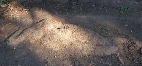 Garden mud trompe loi - detail, eroding female reclining mud buddha.jpg